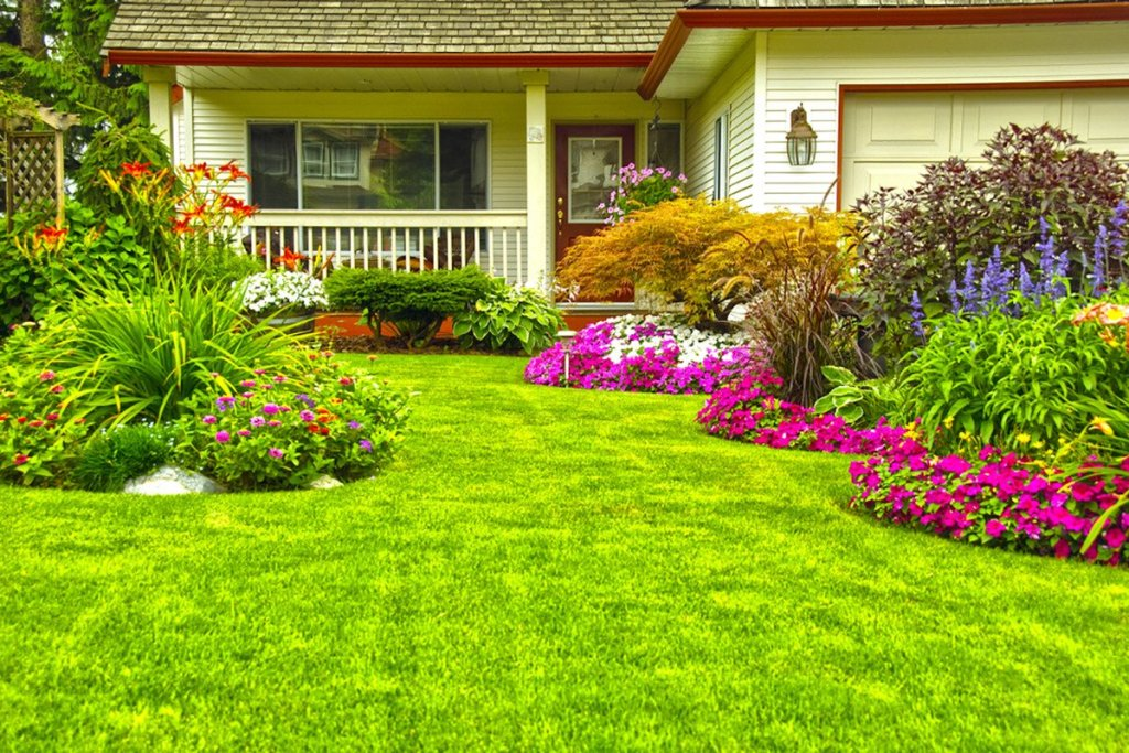 create the perfect garden