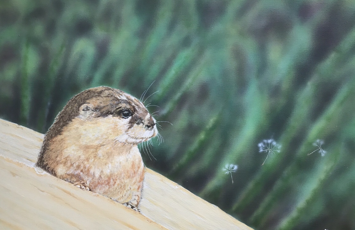 Otter Painting in Acrylic