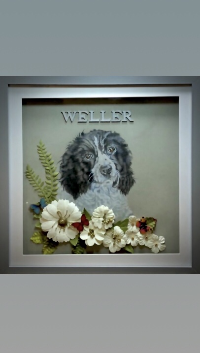 New product Pet Memory Frames