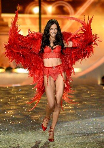 Victoria-Secret-Fashion-Show-2013-Pictures (78)