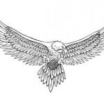Η ιστορία του αετού … – Καταρρίπτεται