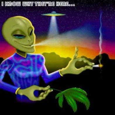 alien-weed