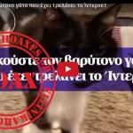 Ο βαρύτονος γάτος που έχει τρελάνει τα social media – Καταρρίπτεται