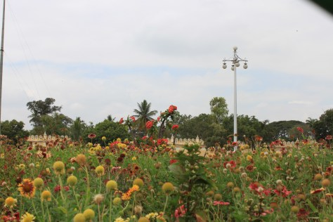 Flowers in Mysore Palace