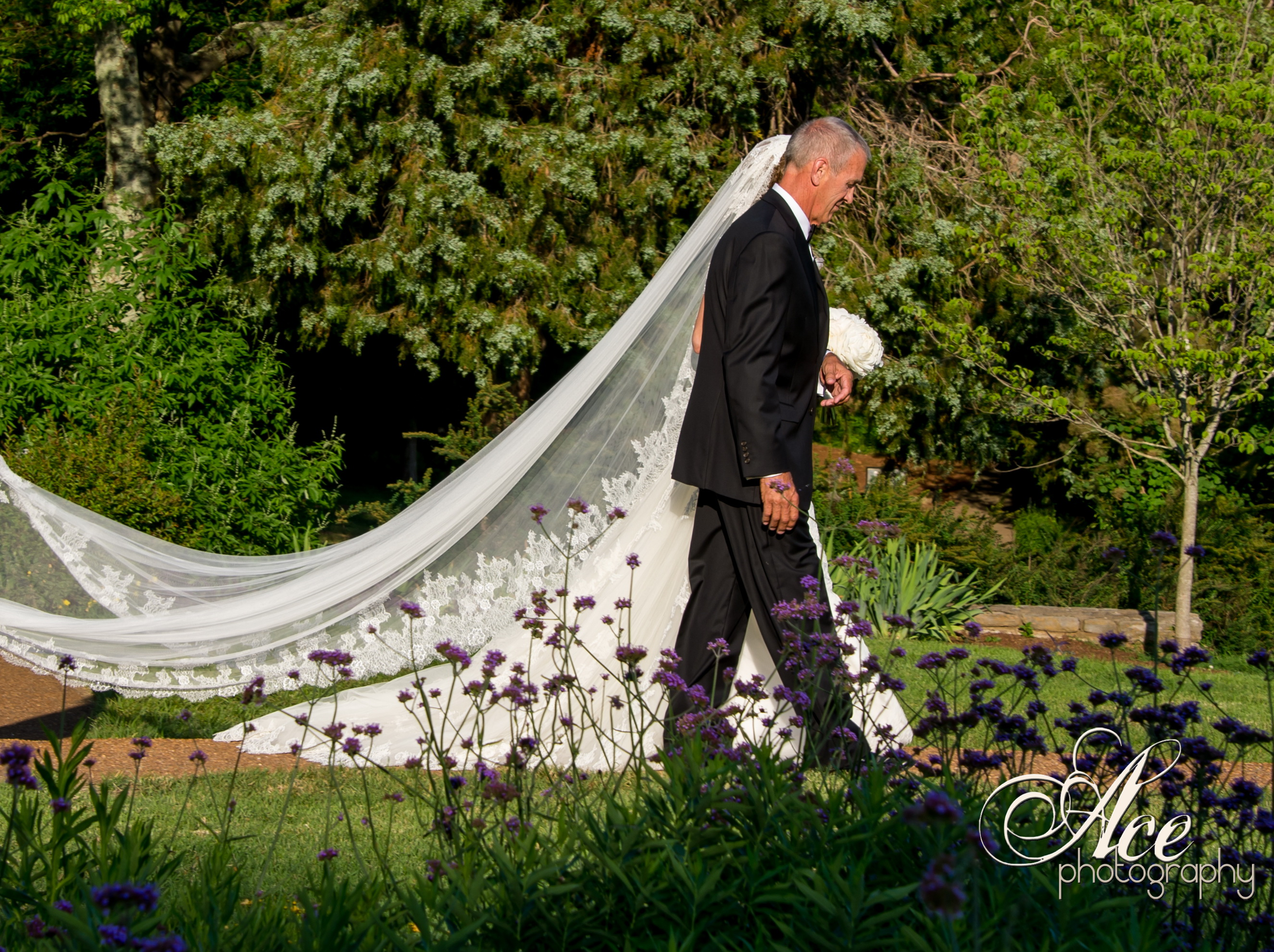 Gary U0026 Alyssa {Nashville Wedding At Cheekwood Botanical Gardens}   Elliott  Events