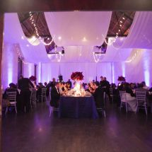 ceiling drape, lights, red florals