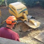 stump grinding richmond va tree service
