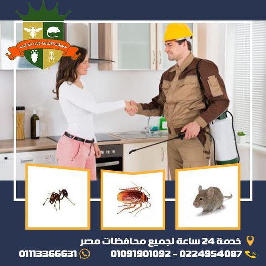 #كيورفاك_الالمانيه لابادة الحشرات