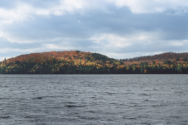 fall foliage on a lakeshore