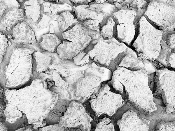 a black and white photo of dried mud in the Pedernales River