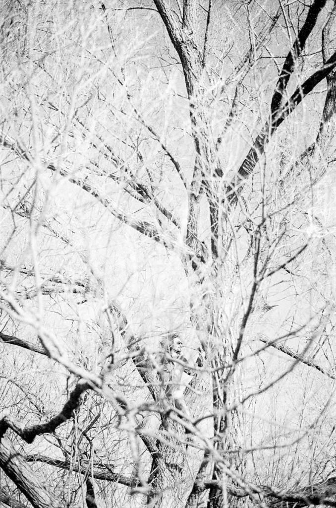 A black and white photo of a man climbing a tree.