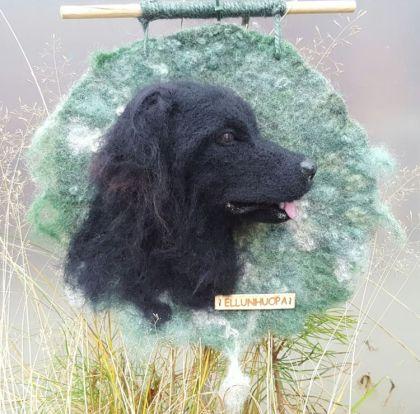 Lemmikkimuotokuva, kuva lemmikkistä, koira, koiran valokuvaus, metsästys koira,