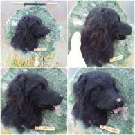 huovutus, kissa ja koira huopa, rintaneula huovasta, huopa, askartelua, koira huovasta