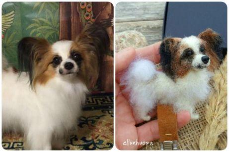 rintaneula, Numerolapun pidike koirasi kuvasta, koiran kilpailunumerolapun pidin, kuira, koira rintaneula,