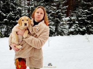 labradoorinnoutaja, koiran rotu, koirat, koiran kuva, käsityö, huovutus, koira huovasta, ellunhuopa, ellun huopa, lahja koiran omistajalle, koiran kouluttaja, metsästys koira