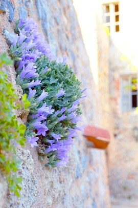 ellwed Ellwed_37 Discover Monemvasia – the medieval city of Greece