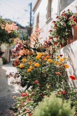 engagementinCrete-Greece-10