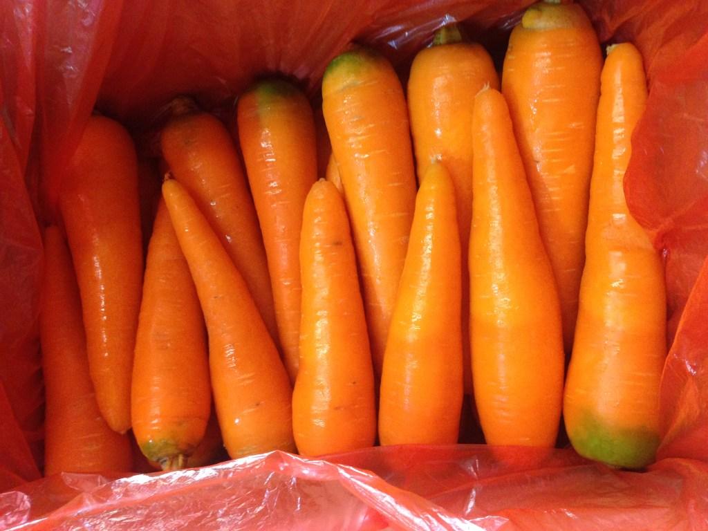 Price Fresh Carrot in Vietnam new crop, fresh carrot size M weigt 100-200gm/ piece