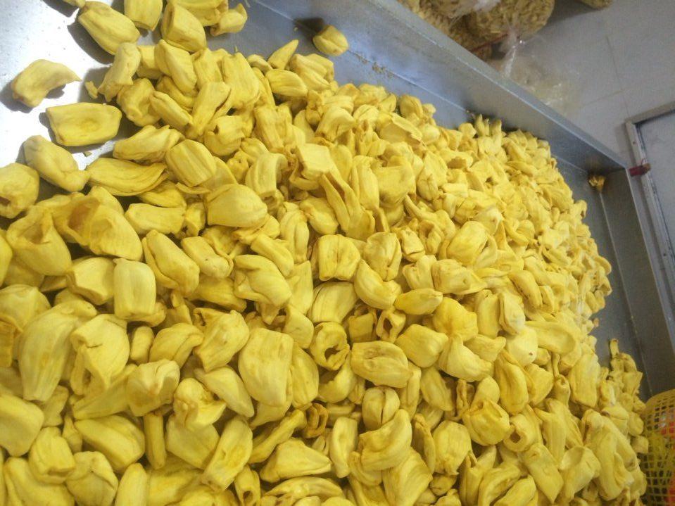 Jackfruit chips best price from Vietnam, vacuum drying. Good price, crunchy, delicious jackfruit chips snack.