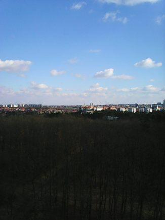 Photo2436
