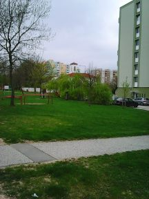 Photo2804