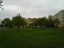 Photo2847
