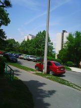Photo3187