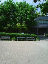 Photo3203