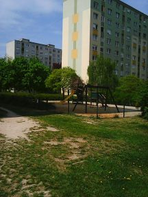 Photo3243