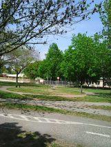 Photo3256