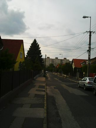 Photo3339