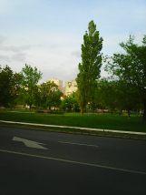 Photo3348