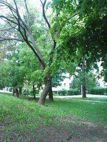 Photo3414