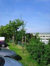 Photo3501