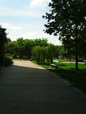 Photo3546