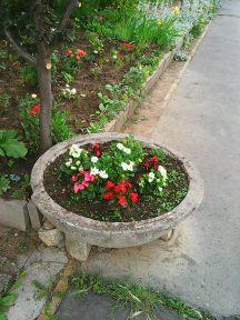 Photo3943