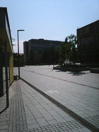Photo4561