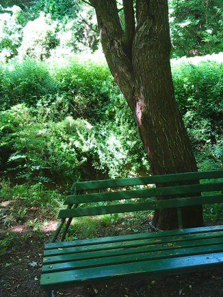 Photo4656