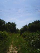 Photo4862
