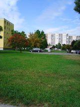 Photo4928