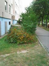 photo5112