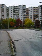 photo5555