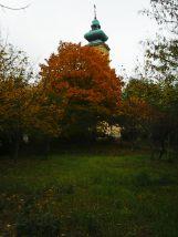 photo5606