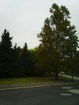 photo5626
