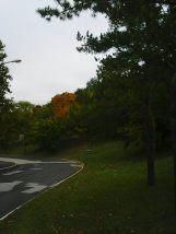 photo5627