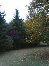 photo5630