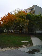 photo5641