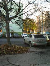 photo6023