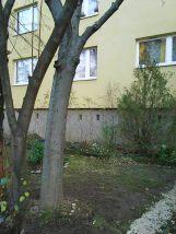 photo6193