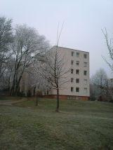 photo6683